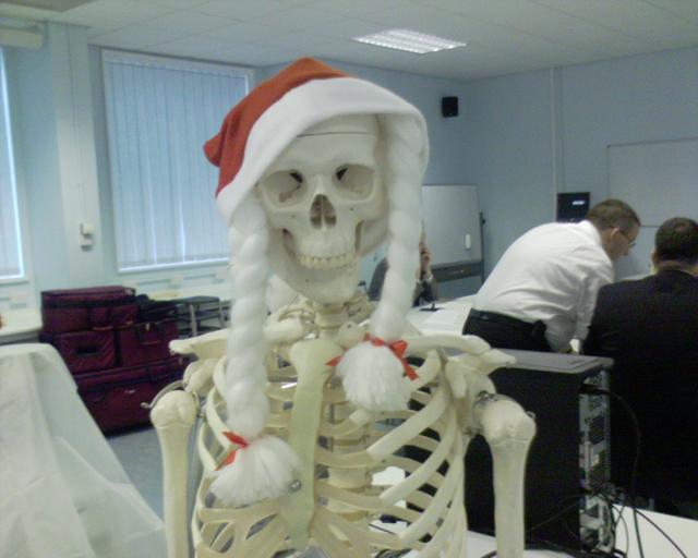Christmas Skeleton.Christmas Skeleton Don T Be A Salmon