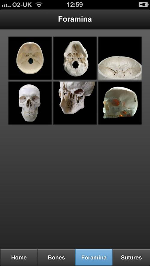 Skull Iphone 3